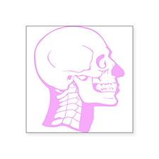 Pink X-Ray Skull Sticker