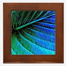 Abstracted Leaf Framed Tile