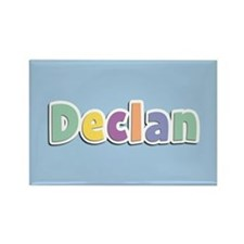 Declan Spring14 Rectangle Magnet