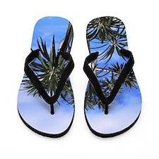 Palm Trees Flip Flops