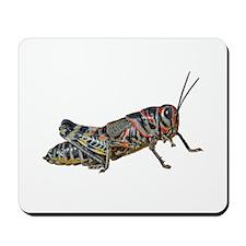 Colorful Grasshopper Mousepad