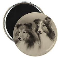 Vintage Shelties Magnet