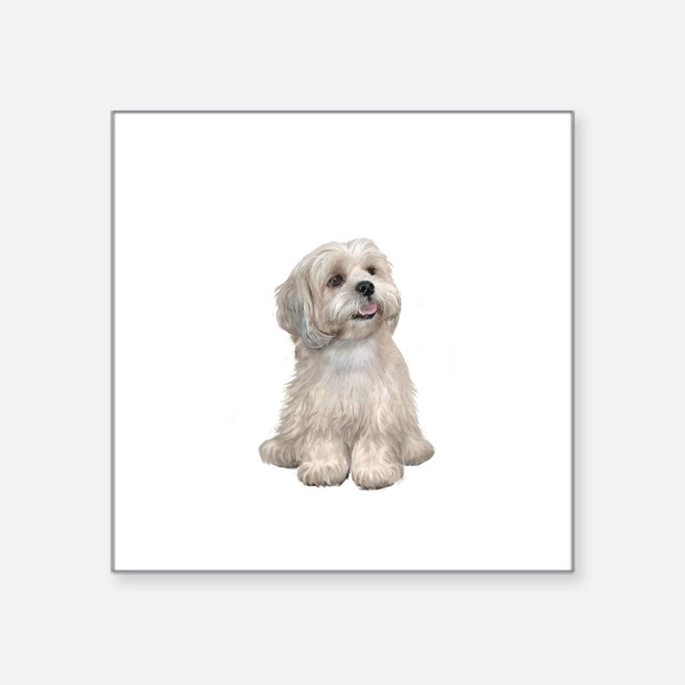 "Lhasa Apso (R) Square Sticker 3"" x 3"""