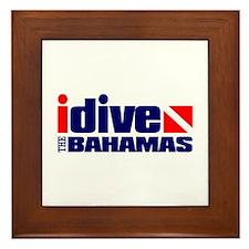 idive (Bahamas) Framed Tile