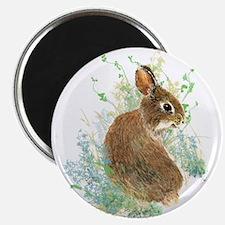 Cute Watercolor Bunny Rabbit Pet Animal Magnets