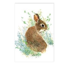 Cute Watercolor Bunny Postcards (package Of 8)