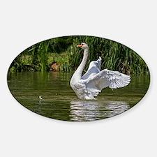 Swan Sticker (Oval)