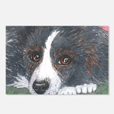 Thoughtful Border Collie dog Postcards (Package of