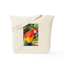 Scarlet Macaw eating Walnut Tote Bag