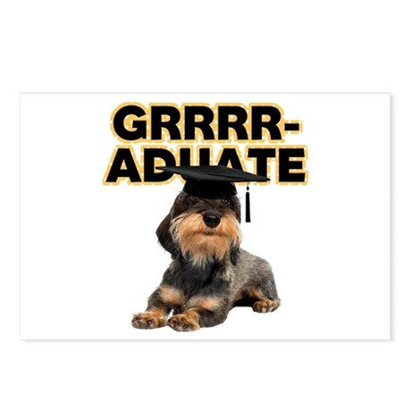 Graduation Wirehaired Dac Postcards (Package of 8)