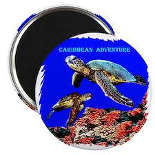Caribbean Adventure - Magnet