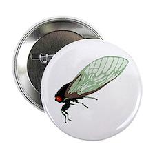 Cicada Button