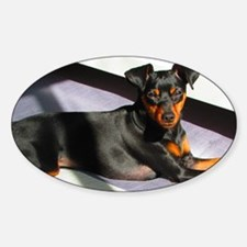 Min Pin Decal