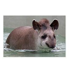 Cute Tapir Postcards (Package of 8)