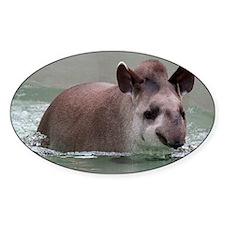 Cute Tapir Decal