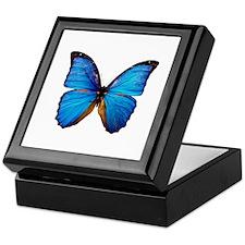 Animals Blue Butterfly Keepsake Box