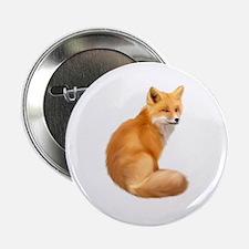 """animals fox 2.25"""" Button"""
