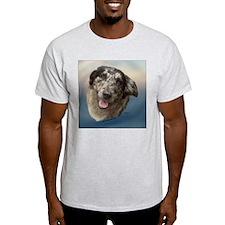 Shiloh the Aussie T-Shirt