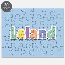 Leland Spring14 Puzzle