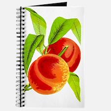 Peach  Journal