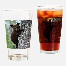 Bear Cub Climbing a Tree Drinking Glass