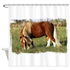 Stormy in the Field Shower Curtain