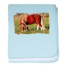 Stormy in the Field baby blanket