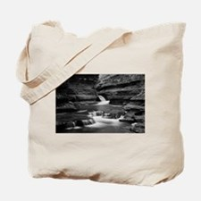 Buttermilk Falls, New York (BW) Tote Bag