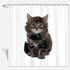 Adorable Cute Kitty Shower Curtain