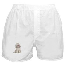 Tibetan Terrier (W) Boxer Shorts