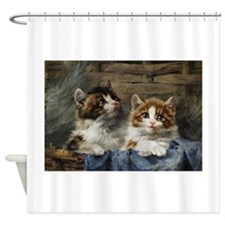 Two Kittens In A Basket Painting Shower Curtain