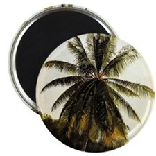 Palm Trees, West Indies Magnet