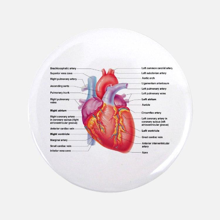 """Human Heart 3.5"""" Button"""