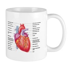 Human Heart Mugs