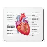 Human heart Classic Mousepad