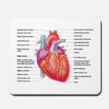 Human Heart Mousepad