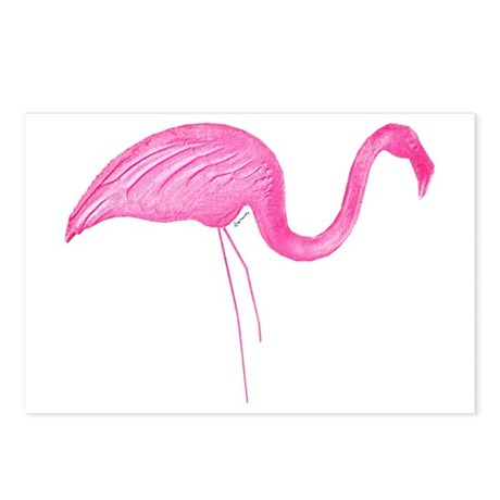 flamingo 6 Postcards (Package of 8)