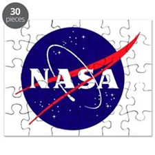 NASA Meatball Logo Puzzle