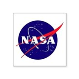 Nasa logo Stickers & Flair
