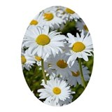 Daisy Oval Ornaments