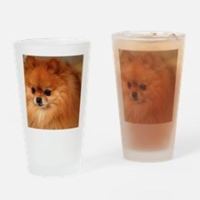 Cute Pomeranian lover Drinking Glass