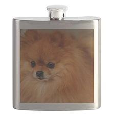 Cute Pomeranian lover Flask