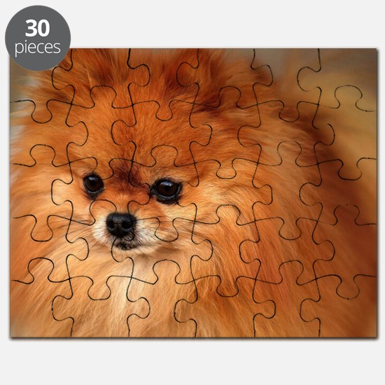 Cute Pomeranian Puzzle