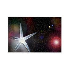 StarFish Rectangle Magnet