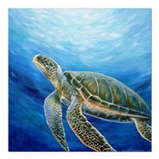 "Sea Turtle Square Car Magnet 3"" x 3"""