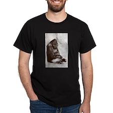 Big Ol Silverback T-Shirt