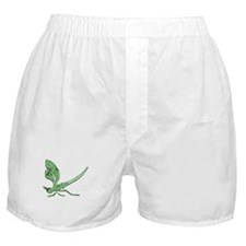Glass Dragonfly Boxer Shorts