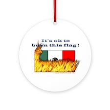 Burn This Flag Ornament (Round)