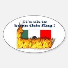 Burn This Flag Oval Decal