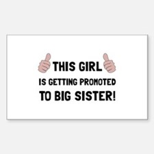 Promoted To Big Sister Decal